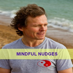 Mindful Nudges
