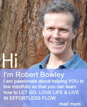 About Robert Bowley