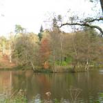 Peacefulness of Autumn